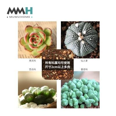 MMH fleshy plant nutrition soil peat soil color pavement stone granular soil akadama soil soil.