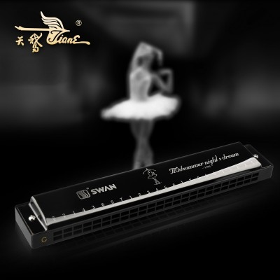 The harmonica swan is 24 kong, and the beginner children are taught to practice adult instruments