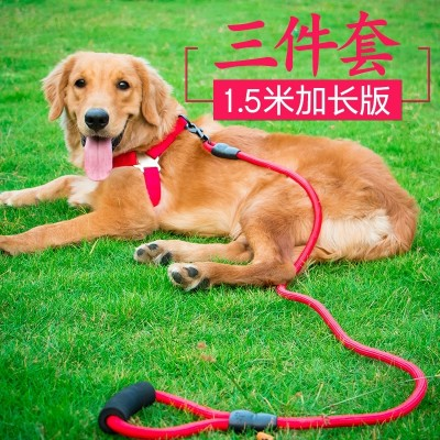 Dogs, traction ropes, dogs, chain collars, Teddy, golden cats, small, medium and large dogs, dogs, ropes, pet products