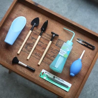 One dish succulent planting tool novice suite gardening tool suite.