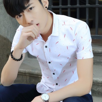 Summer business casual short sleeve shirt, men's Korean version inch shirt, slim dress, handsome clothes, young men's white shirt
