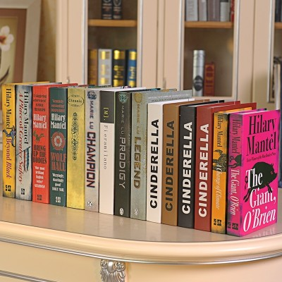 Omina modern simulation book book book props false housing model of soft decoration decoration furniture decoration C bookcase