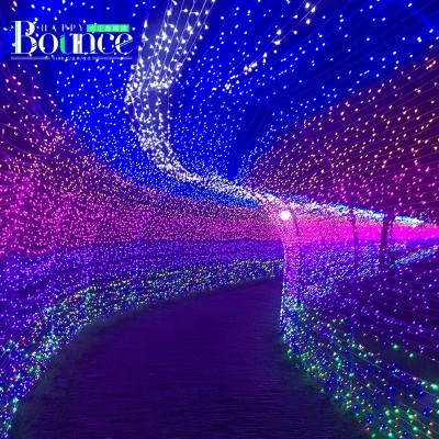 Waterproof outdoor LED holiday lights flashing light wedding New Year decoration lamp neon stars