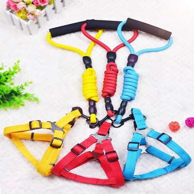 Dogs, traction ropes, dog chains, Teddy gold, small, medium sized dogs, puppies, walking dogs, ropes, dog straps, pet supplies