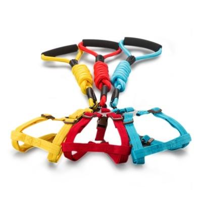 Dog traction rope, Teddy walk dog rope, dog chain, doggie collar, small medium size dog, golden dog pet supplies