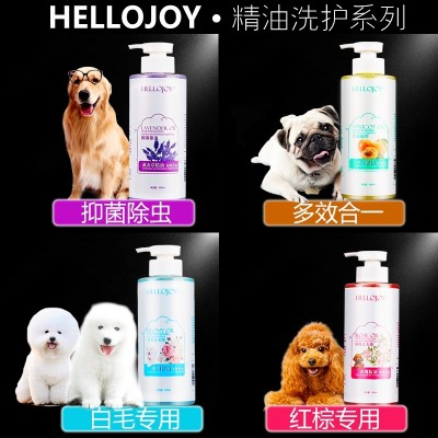 The dog bath sterilization cat pet bath supplies Tactic Bichon acaricidal antibacterial shampoo hair